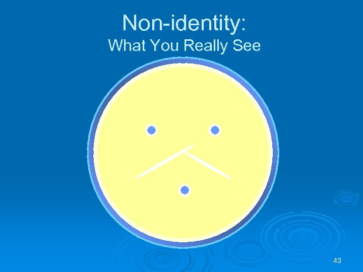 Non-identity: What You Really See 43
