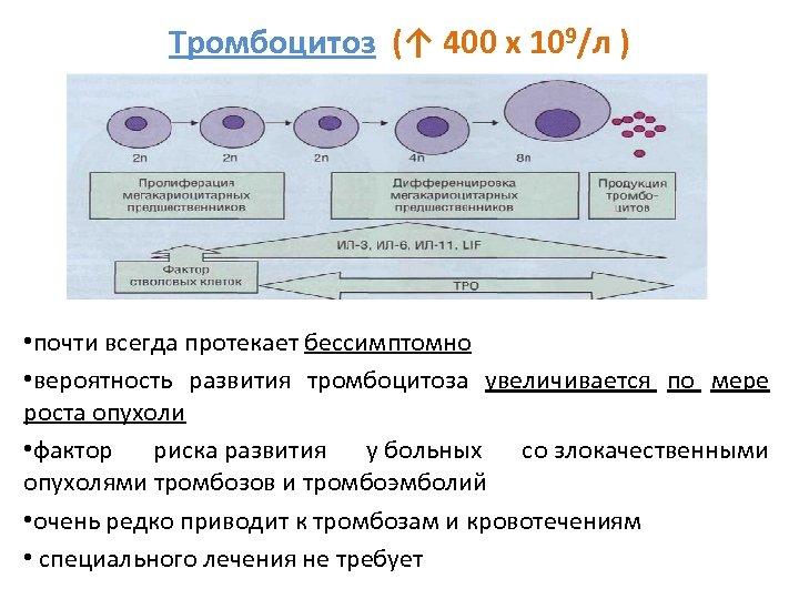 Тромбоцитоз (↑ 400 х 109/л ) • почти всегда протекает бессимптомно • вероятность развития