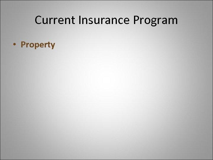 Current Insurance Program • Property