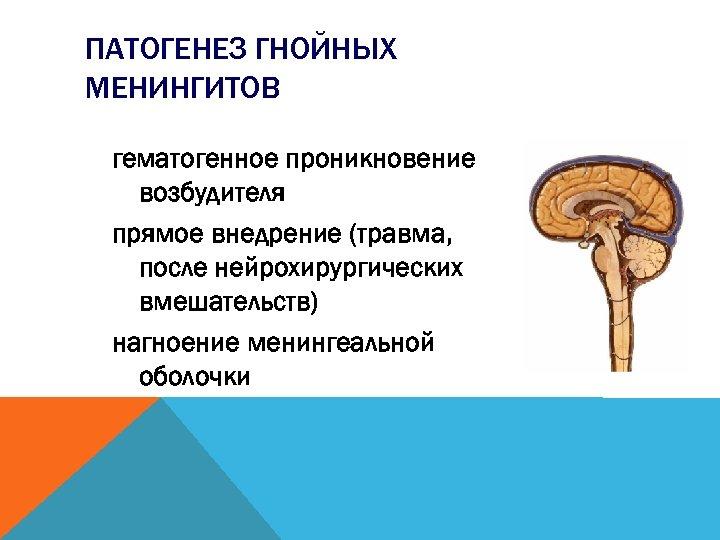 ПАТОГЕНЕЗ ГНОЙНЫХ МЕНИНГИТОВ гематогенное проникновение возбудителя прямое внедрение (травма, после нейрохирургических вмешательств) нагноение менингеальной