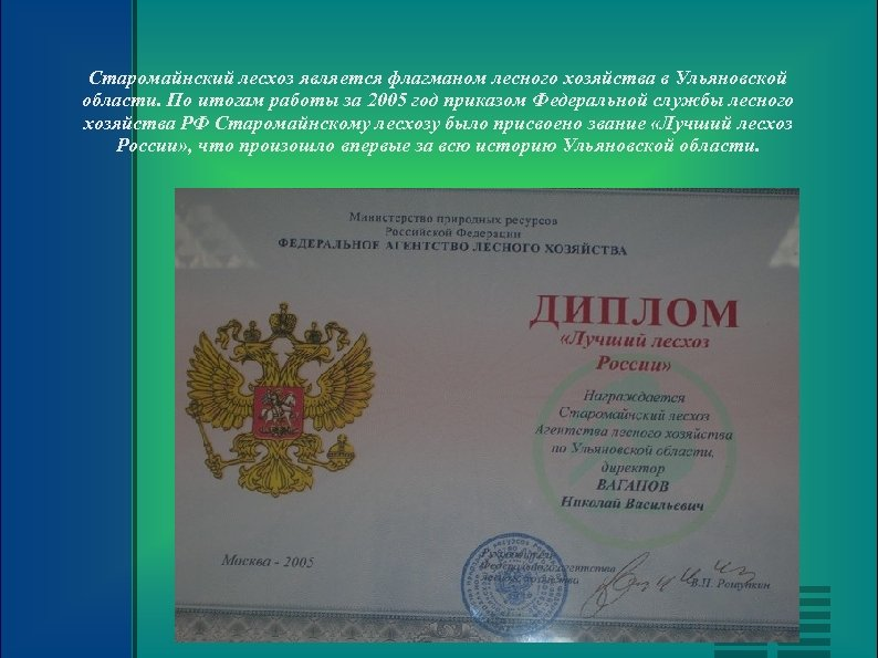 Старомайнский лесхоз является флагманом лесного хозяйства в Ульяновской области. По итогам работы за 2005