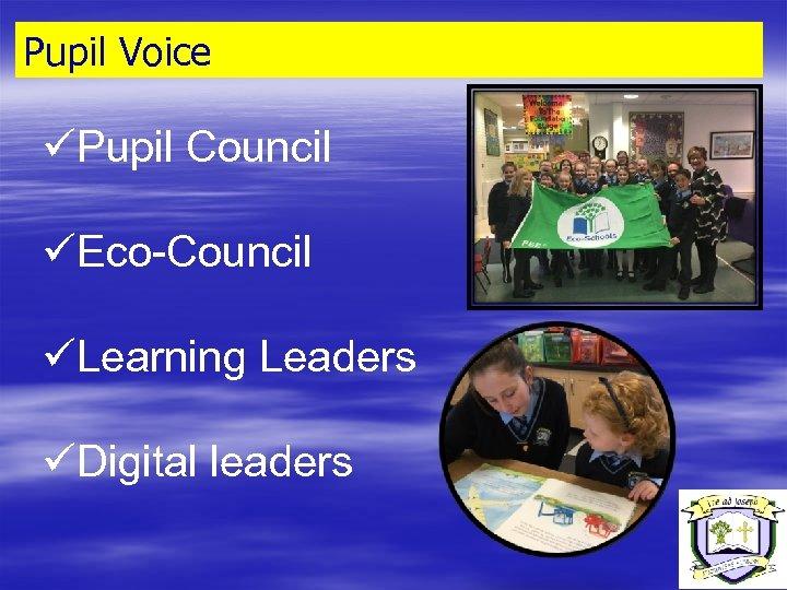Pupil Voice üPupil Council üEco-Council üLearning Leaders üDigital leaders