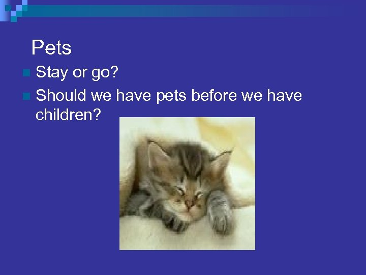 Pets Stay or go? n Should we have pets before we have children? n