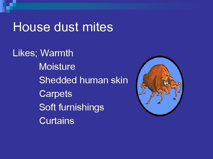 House dust mites Likes; Warmth Moisture Shedded human skin Carpets Soft furnishings Curtains