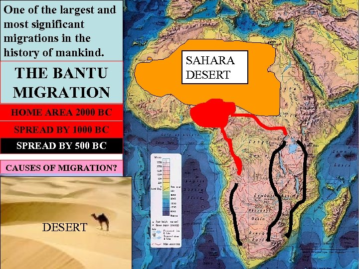 One of the largest and most significant migrations in the history of mankind. THE