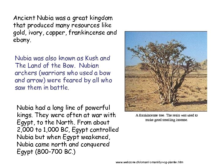 Ancient Nubia was a great kingdom that produced many resources like gold, ivory, copper,