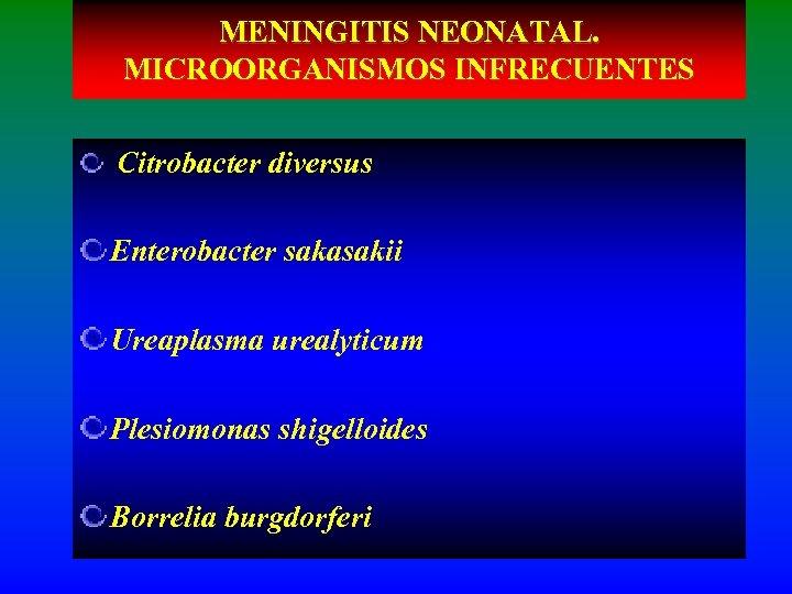 MENINGITIS NEONATAL. MICROORGANISMOS INFRECUENTES Citrobacter diversus Enterobacter sakasakii Ureaplasma urealyticum Plesiomonas shigelloides Borrelia burgdorferi