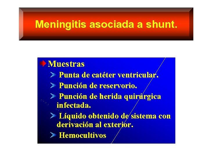 Meningitis asociada a shunt. Muestras Punta de catéter ventricular. Punción de reservorio. Punción de