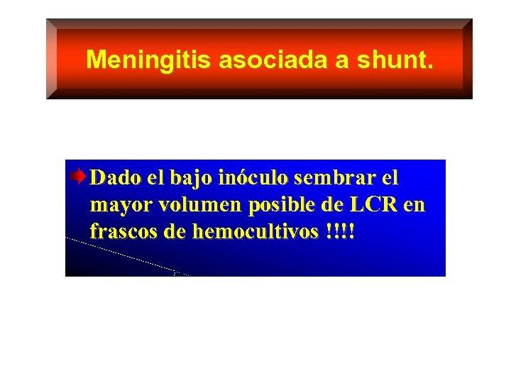 Meningitis asociada a shunt. Dado el bajo inóculo sembrar el mayor volumen posible de
