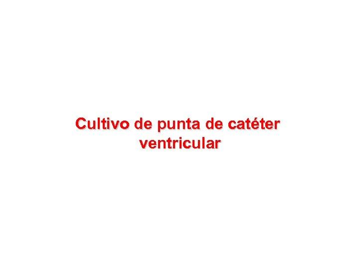 Cultivo de punta de catéter ventricular