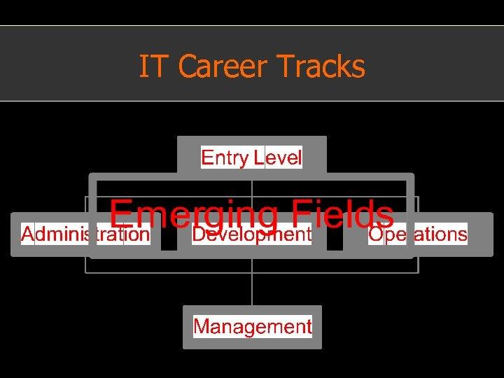 IT Career Tracks