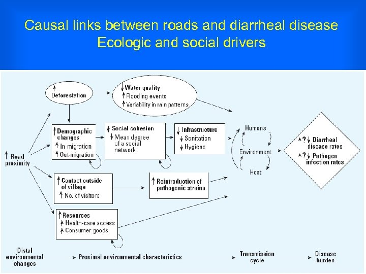 Causal links between roads and diarrheal disease Ecologic and social drivers