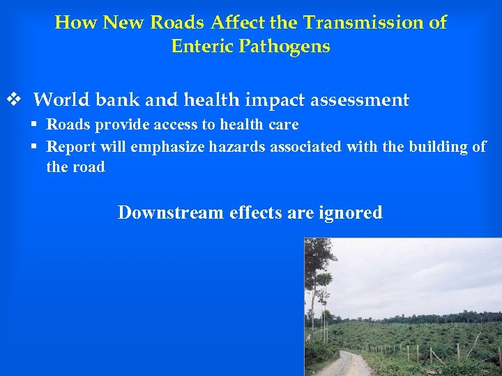 How New Roads Affect the Transmission of Enteric Pathogens v World bank and health