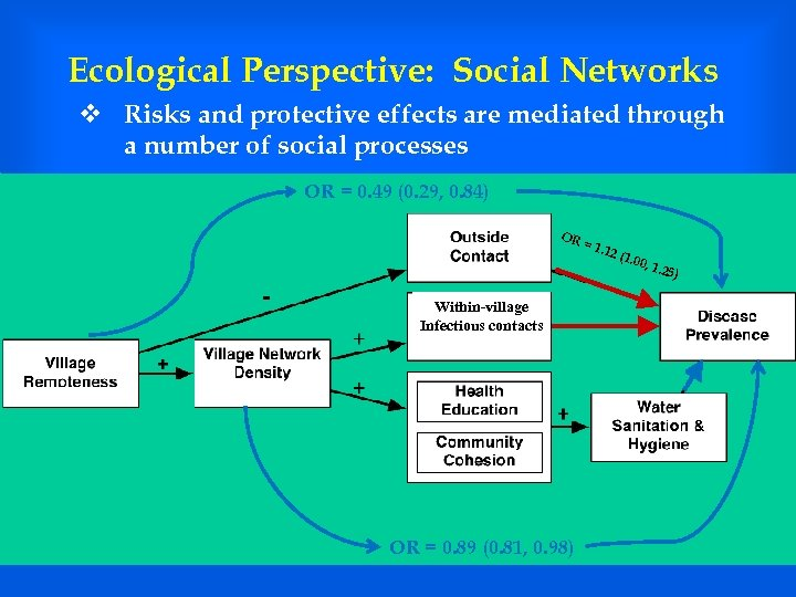 Ecological Perspective: Social Networks v Risks and protective effects are mediated through a number