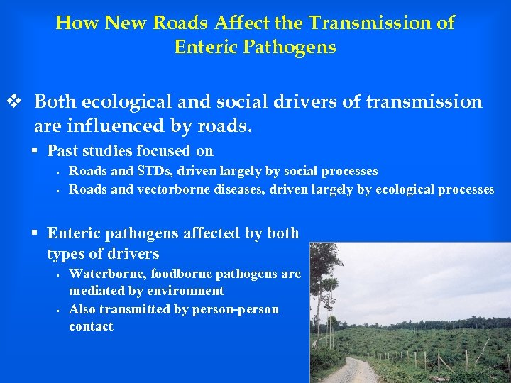 How New Roads Affect the Transmission of Enteric Pathogens v Both ecological and social