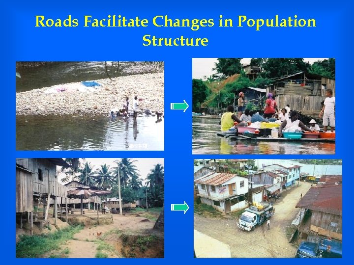 Roads Facilitate Changes in Population Structure