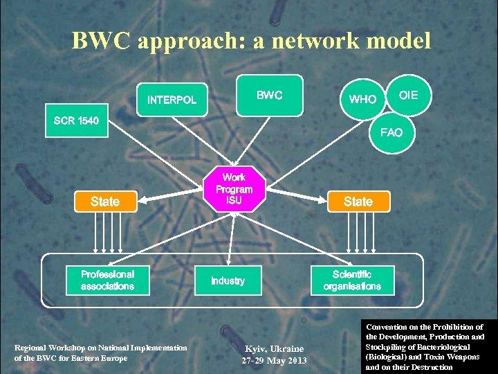 BWC approach: a network model BWC INTERPOL SCR 1540 State Professional associations Regional Workshop