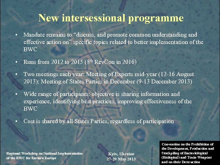 """New intersessional programme • Mandate remains to """"discuss, and promote common understanding and effective"""