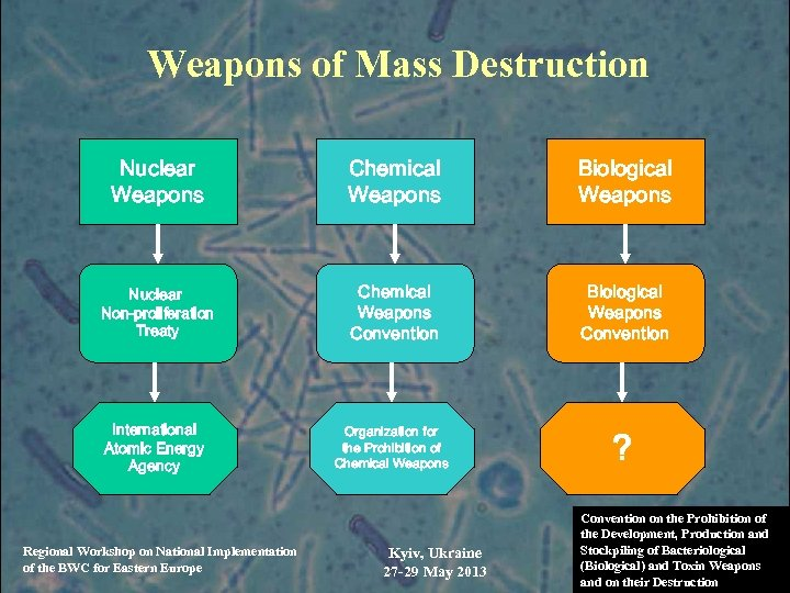 Weapons of Mass Destruction Nuclear Weapons Chemical Weapons Biological Weapons Nuclear Non-proliferation Treaty Chemical
