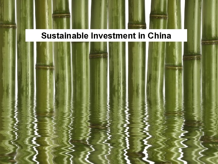 Sustainable Investment in China 1
