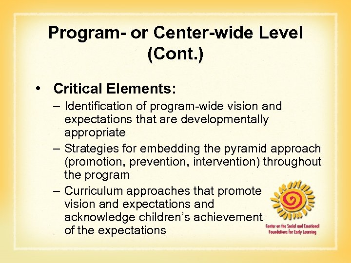 Program- or Center-wide Level (Cont. ) • Critical Elements: – Identification of program-wide vision