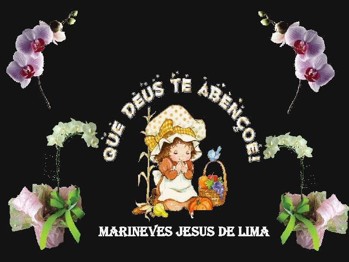 MARINEVES JESUS DE LIMA