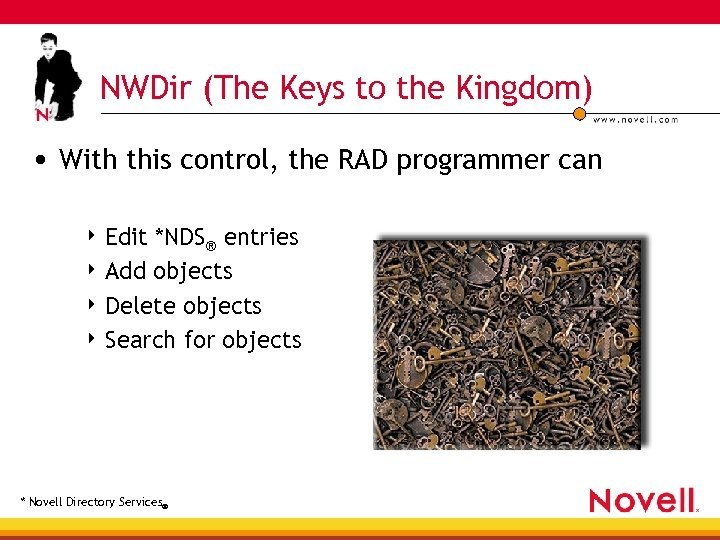 NWDir (The Keys to the Kingdom) • With this control, the RAD programmer can