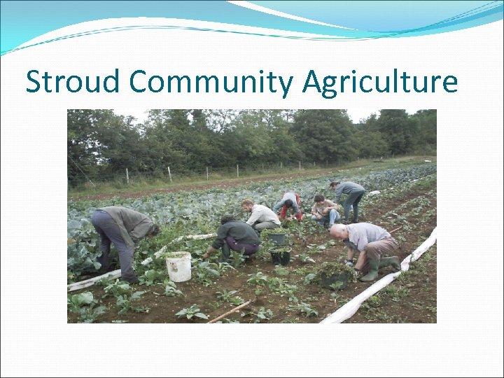 Stroud Community Agriculture