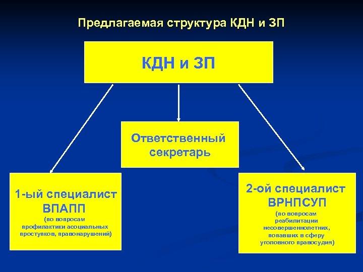 Предлагаемая структура КДН и ЗП Ответственный секретарь 1 -ый специалист ВПАПП (по вопросам профилактики