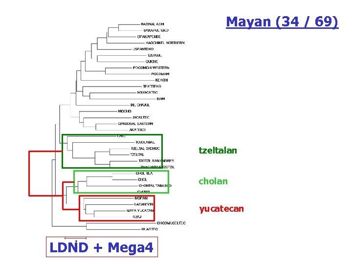 Mayan (34 / 69) tzeltalan cholan yucatecan LDND + Mega 4