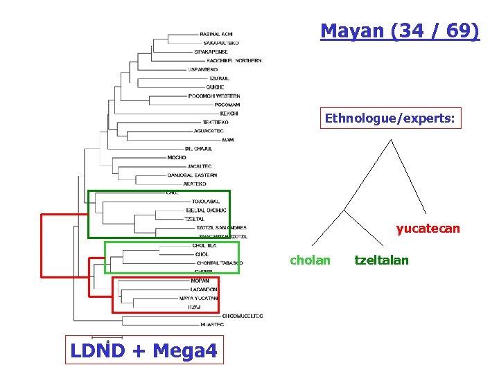 Mayan (34 / 69) Ethnologue/experts: yucatecan cholan LDND + Mega 4 tzeltalan