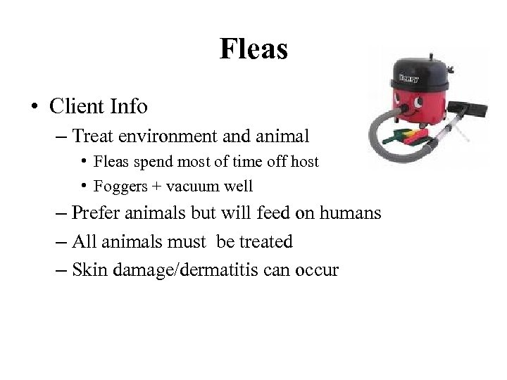 Fleas • Client Info – Treat environment and animal • Fleas spend most of