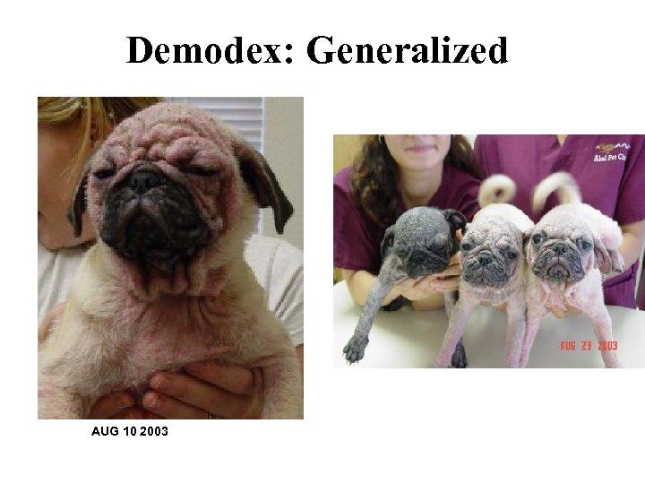 Demodex: Generalized AUG 10 2003