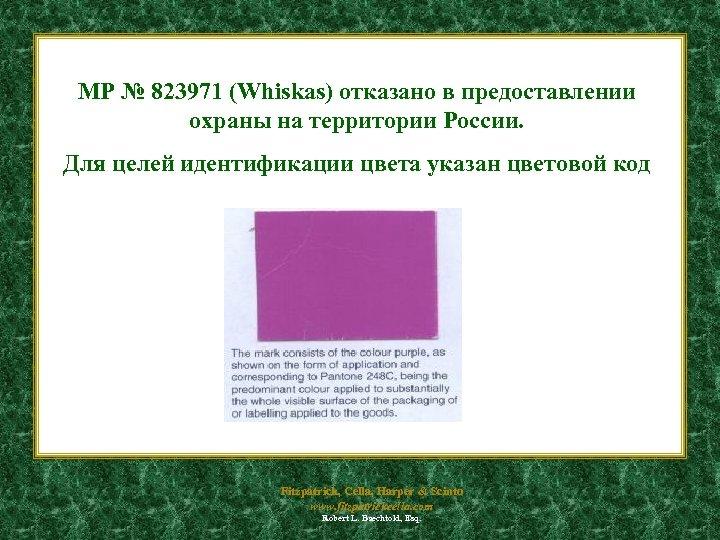 МР № 823971 (Whiskas) отказано в предоставлении охраны на территории России. Для целей идентификации
