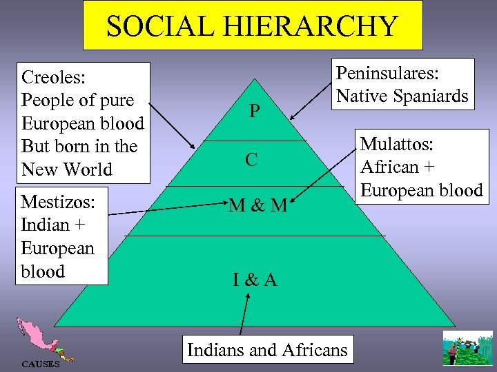 SOCIAL HIERARCHY Creoles: People of pure European blood But born in the New World
