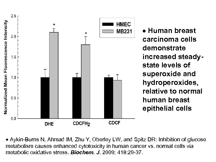 Human breast carcinoma cells demonstrate increased steadystate levels of superoxide and hydroperoxides, relative