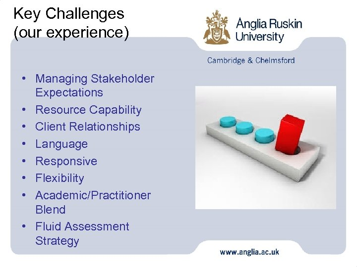 Key Challenges (our experience) • Managing Stakeholder Expectations • Resource Capability • Client Relationships