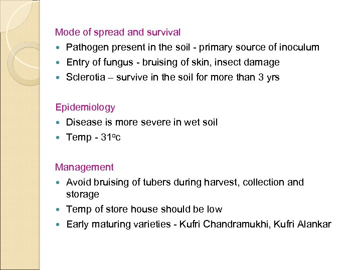 Mode of spread and survival Pathogen present in the soil - primary source of