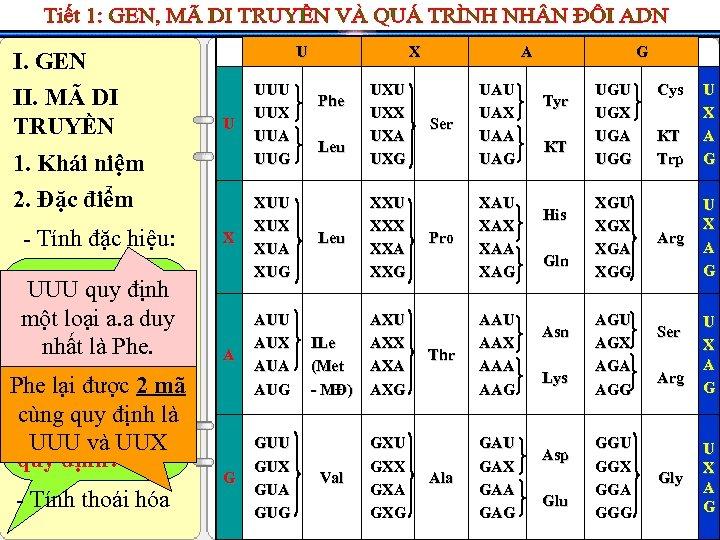 I. GEN II. MÃ DI TRUYỀN U U 1. Khái niệm 2. Đặc điểm
