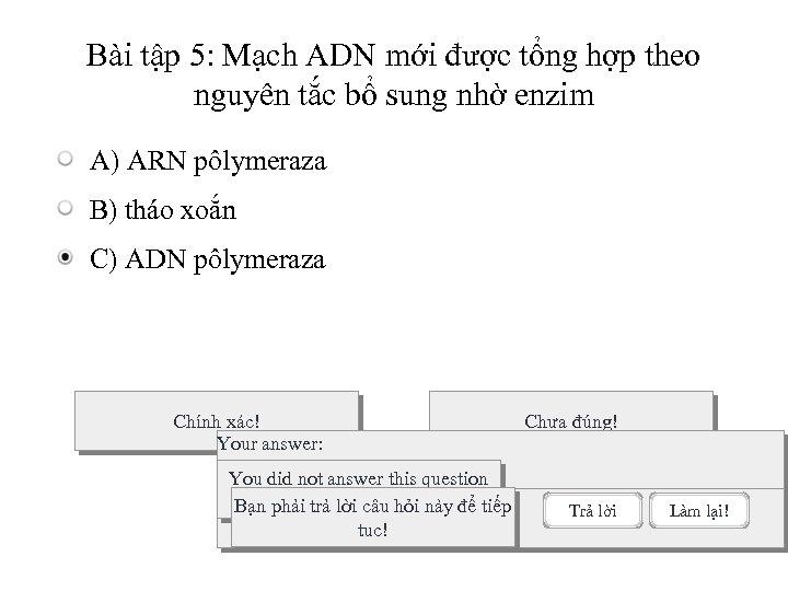 Bài tập 5: Mạch ADN mới được tổng hợp theo nguyên tắc bổ sung