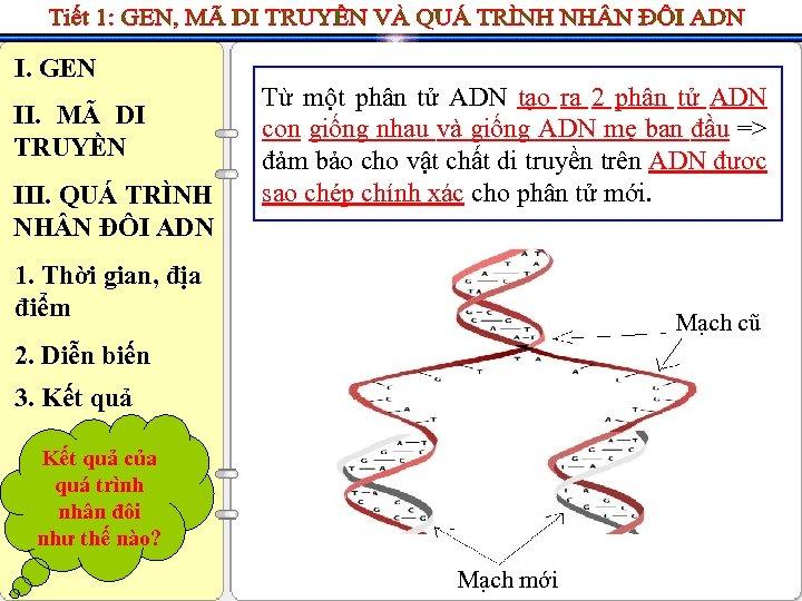 I. GEN II. MÃ DI TRUYỀN III. QUÁ TRÌNH NH N ĐÔI ADN Từ