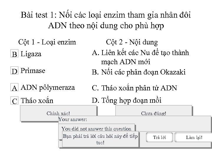 Bài test 1: Nối các loại enzim tham gia nhân đôi ADN theo nội