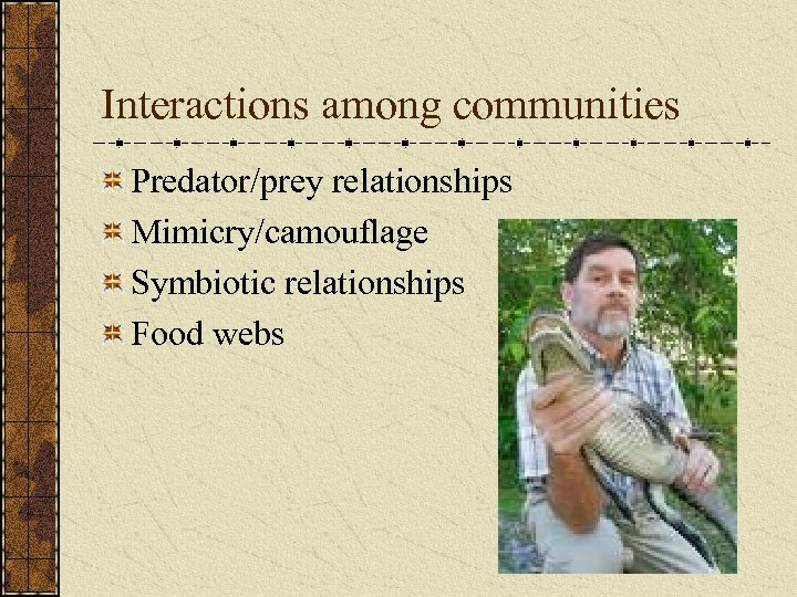 Interactions among communities Predator/prey relationships Mimicry/camouflage Symbiotic relationships Food webs