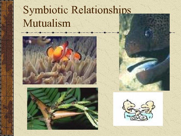 Symbiotic Relationships Mutualism