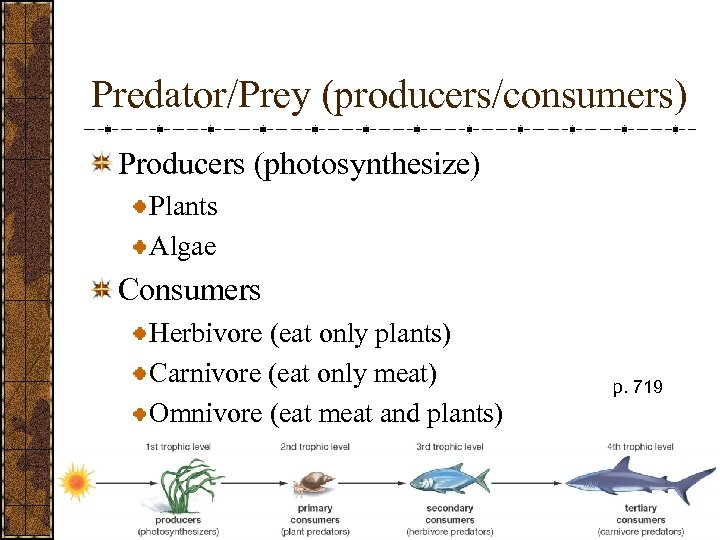Predator/Prey (producers/consumers) Producers (photosynthesize) Plants Algae Consumers Herbivore (eat only plants) Carnivore (eat only