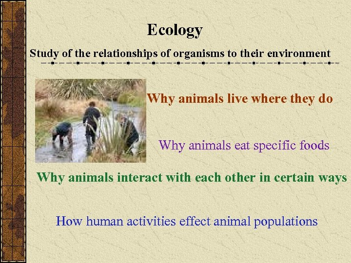 Ecology Study of the relationships of organisms to their environment Why animals live where