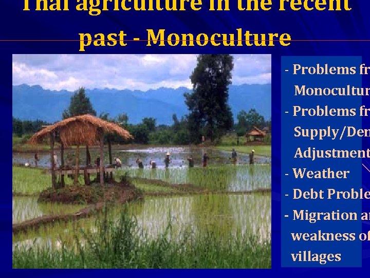 Thai agriculture in the recent past - Monoculture - Problems fr Monocultur - Problems