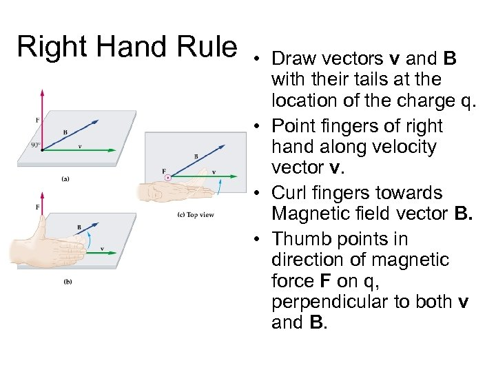 Right Hand Rule • Draw vectors v and B with their tails at the