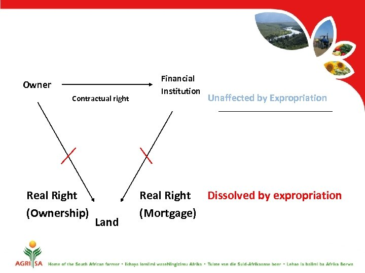 Owner Contractual right Real Right (Ownership) Land Financial Institution Unaffected by Expropriation Real Right