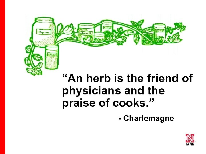 """An herb is the friend of physicians and the praise of cooks. "" -"
